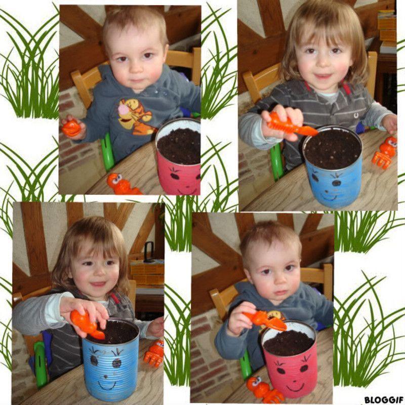 Tout Sur Le Jardinage Comment Tout Savoir Sur Le